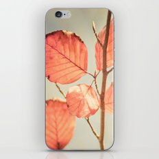 Simply Leaves iPhone & iPod Skin