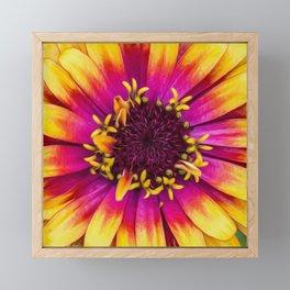Blossom Forth Framed Mini Art Print