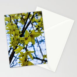 Yellow Flowers - Spring Arrives Stationery Cards