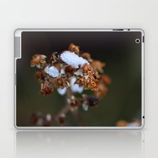 Snow Bound Laptop & iPad Skin