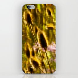 Colorful Wind iPhone Skin