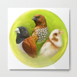 Munia finches realistic painting Metal Print