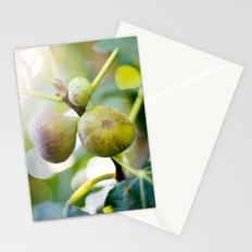 Figs Stationery Cards