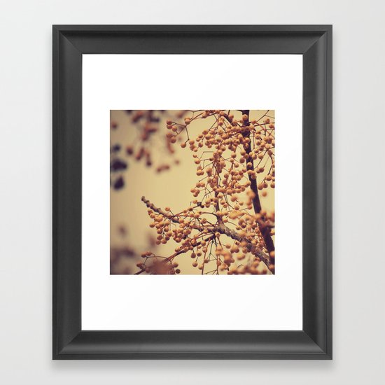 Autumn Life (III) Framed Art Print