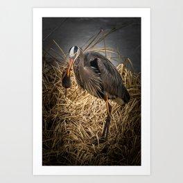 Heron and the mole Art Print