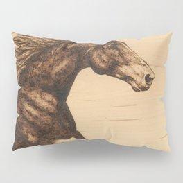 Chasing the Horizon Pillow Sham