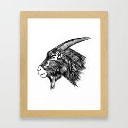 Black Phillip Framed Art Print