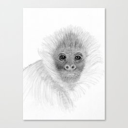 Frank, the Spider Monkey, greyscale Canvas Print