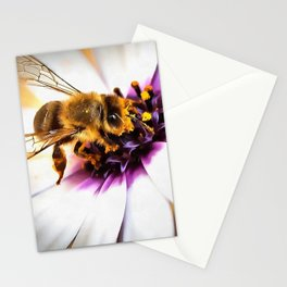 Springtime Honeybee On White African Daisy Stationery Cards