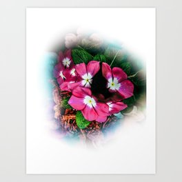Last summer flower Art Print