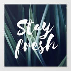 Stay Fresh Canvas Print