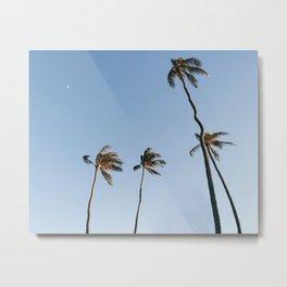 Palm Trees and Moon Beams Metal Print