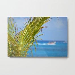 Palm Closeup – Cozumel Metal Print