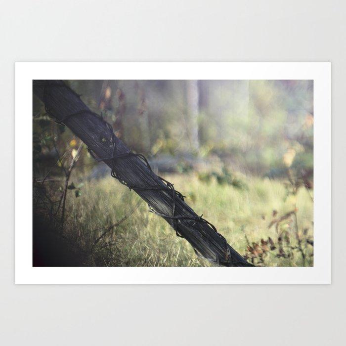 Barb Wire Art Print