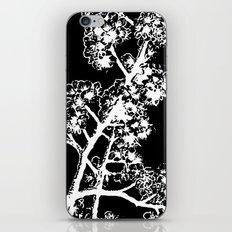 Cherry Blossom #4 iPhone & iPod Skin