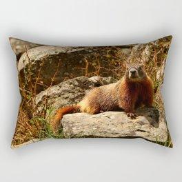 Hello There Rectangular Pillow