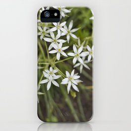 Silvestre iPhone Case