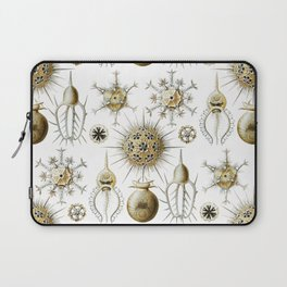 Ernst Haeckel - Phaeodaria Laptop Sleeve