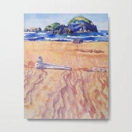 On the Oregon Coast (Meyers Beach) Metal Print