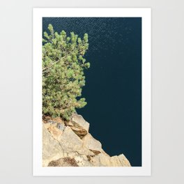 Tree And Rock And Water Art Print
