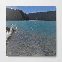 Montana     At the Lake Metal Print