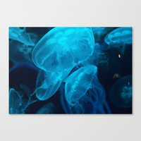 jelly fish Canvas Prints featuring Jelly Fish by Robert Payton
