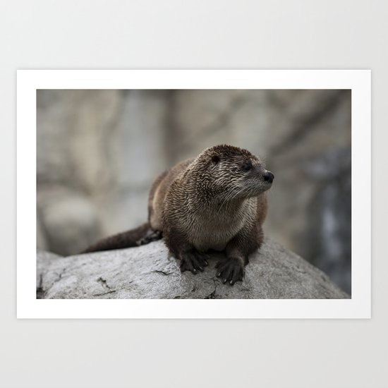 Doin' What He Otter Art Print