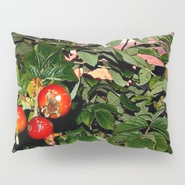 Rose Hips by the Sea, at Sunset (Wild Fresh, Bright and Ripe) Pillow Sham