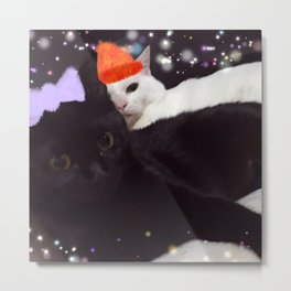 cats-415 Metal Print