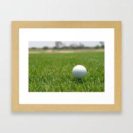 Golf Ball Framed Art Print