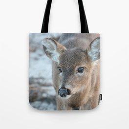 Deer At Fire Island Tote Bag