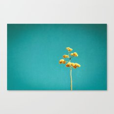 Desert Bloom Canvas Print