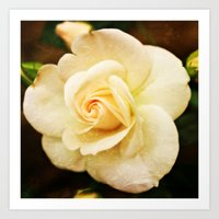 romance Art Prints featuring Romance by Clare Bevan Photography