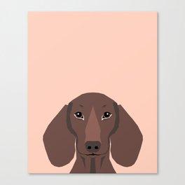 Remy - Daschund hipster dog, doxie, weiner dog, wiener dog,  Canvas Print