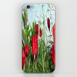 Landscape Close Up Poppies Against Morning Sky iPhone Skin