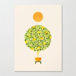 Sunshine + Lemon Tree Illustration Canvas Print