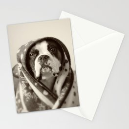 Obi Wan (Buck the world's most lovable boxer dog) Stationery Cards
