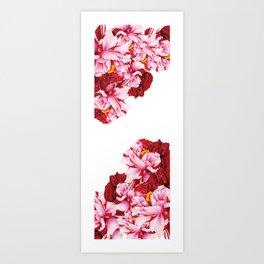 Floral Theme- Bi-color Peony Flower - Watercolor Illustration Art Print