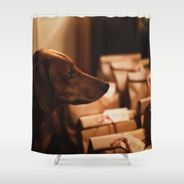 Dog by Ethan Sexton Shower Curtain
