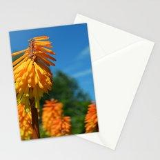 Spots of Orange Stationery Cards