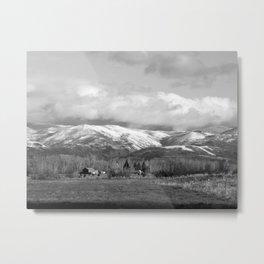 Montana Neighbors Metal Print