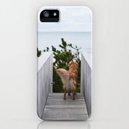 Beach Dog iPhone Case