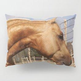 Where Whiz Waylon? Pillow Sham