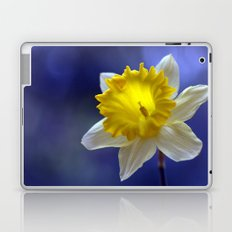 Daffodil in blue 9854 Laptop & iPad Skin