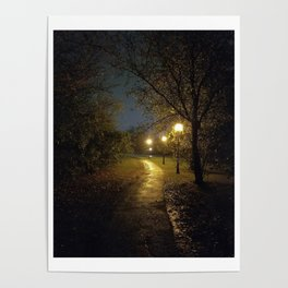 Rainy Path Poster
