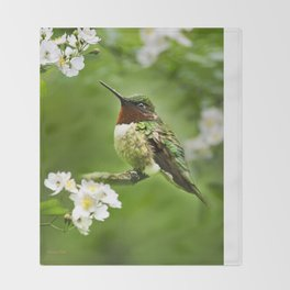 Hummingbird Flora Throw Blanket