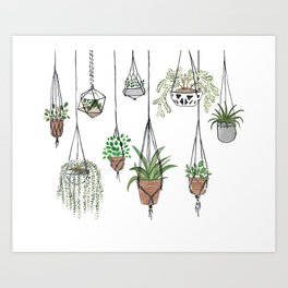 Hanging Plants Art Print