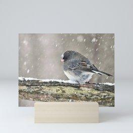 Once Upon a Snow Bird: Junco Mini Art Print