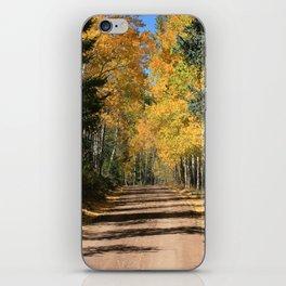Fall Road, Colorado iPhone Skin