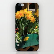 Spring Planter iPhone & iPod Skin